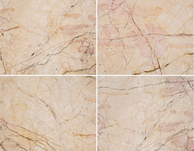 cream-rose-beige-800x800